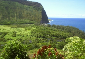 Waipi'o Valley on the Hamakua Coast of the Big Island: Photo by Donald MacGowan