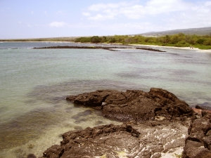 Kaloko Honokohau National Historic Park, Kona Hawaii: Photo by Donnie MacGowan