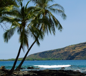 Captain Cook Monument and Kealakekua Bay from Manini Beach at Napo'opo'o, Kona Hawaii: Photo by Donald MacGowan