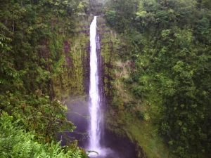 Akaka Falls, Hamakua Hawaii: Photo by Donnie MacGowan