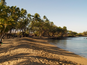 Anaeho'omalu Bay From The North: Photo by Donnie MacGowan