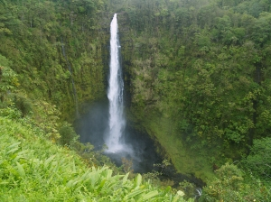 Akaka Falls: Photo by Donnie MacGowan