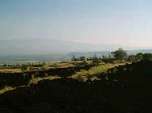 Along Highway 190 Looking Toward Kohala Mountain: Photo by Donnie MacGowan