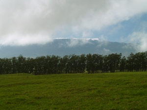 Snow on Mauna Kea from Hwy 19: Photo by Donnie MacGowan