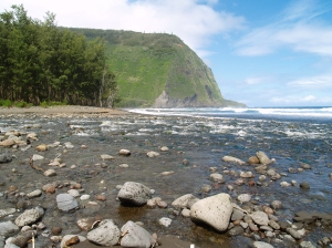 Mouth of Waipi'o Stream: Photo by Donald MacGowan