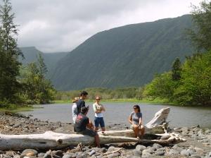Waipi'o Stream from the Mouth of Waipi'o Valley: Photo by Donnie MacGowan