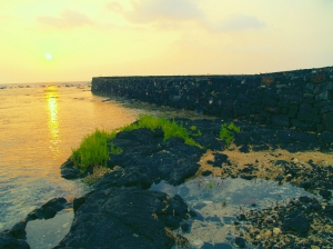 Hapaiali'i Heiau in the Keauhou Historic District, Kona Hawaii: Photo by Donnie MacGowan
