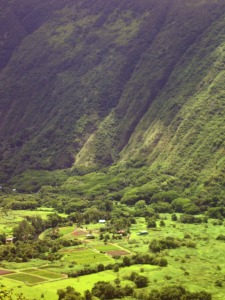 Deep and Mysterious Waipi'o Valley: Photo by Donald MacGowan