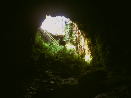 Kaumana Cave, Hilo Hawaii: Photo by Donnie MacGowan