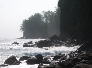 Kolekole Beach Park, Hamakua Coast Hawaii Photo by Donnie MacGowan