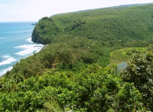 Pololu Canyon and Beach: Photo by Donald MacGowan
