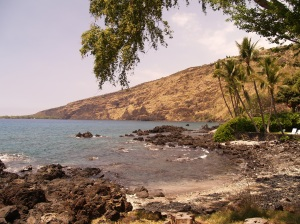 Kealakekua Bay and Captain Cook Monument from Napo'opo'o: Photo by Donnie MacGowan
