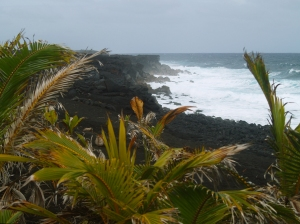 Kaimu Black Sand Beach in Winter: Photo by Donald MacGowan