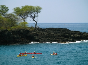 Kayakers Explore Caves and Arches Offshore from Kuamo'o Battlefield: Photo by Donnie MacGowan