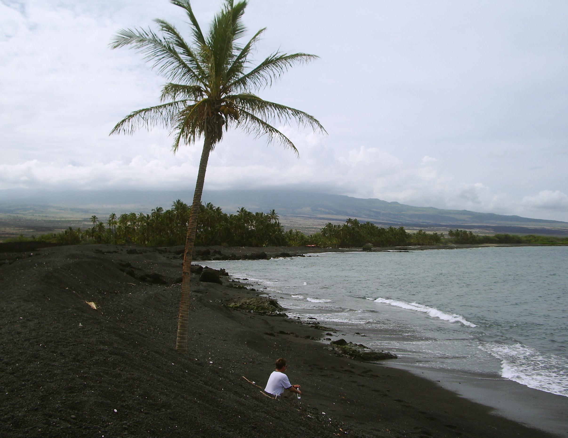 Hidden Secrets Of Hawaii The Golden Ponds Ke Awa Iki Bart Hunt And Curious Lone Palm Tree A Keawaiki Beach Hualalai Volcano In Background