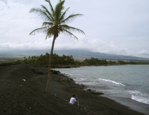 Bart Hunt and the Curious Lone Palm Tree a Keawaiki Beach, Hualalai Volcano in the Background: Photo by Donnie MacGowan