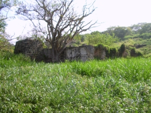 Remnants of the old Kona Sugar Company Mill Near Holualoa: Photo by Donnie MacGowan