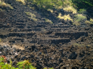 Burial Mounds at Kuamo'o Battlefield: Photo by Donald B. MacGowan