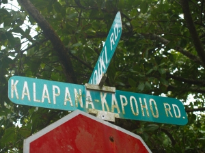 Kapoho Kalapana Road Sign: Photo by Donnie MacGowan
