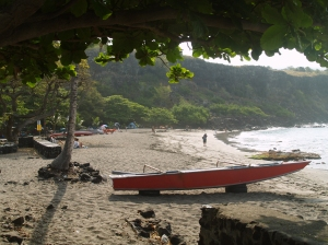 Ho'okena Beach In The Morning: Photo by Donnie MacGowan