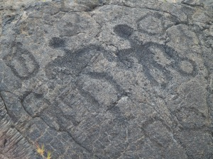Petroglyphs from Pu'u Loa Field, Hawaii Volcanoes National Park: Photo by Donnie MacGowan