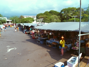 Kailua Famer's Market: Photo by Harvey Bird Watching