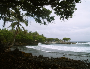 Looking Across Pohoiki Beach to Isaac Hale County Beach Park: Photo by Donald B. MacGowan