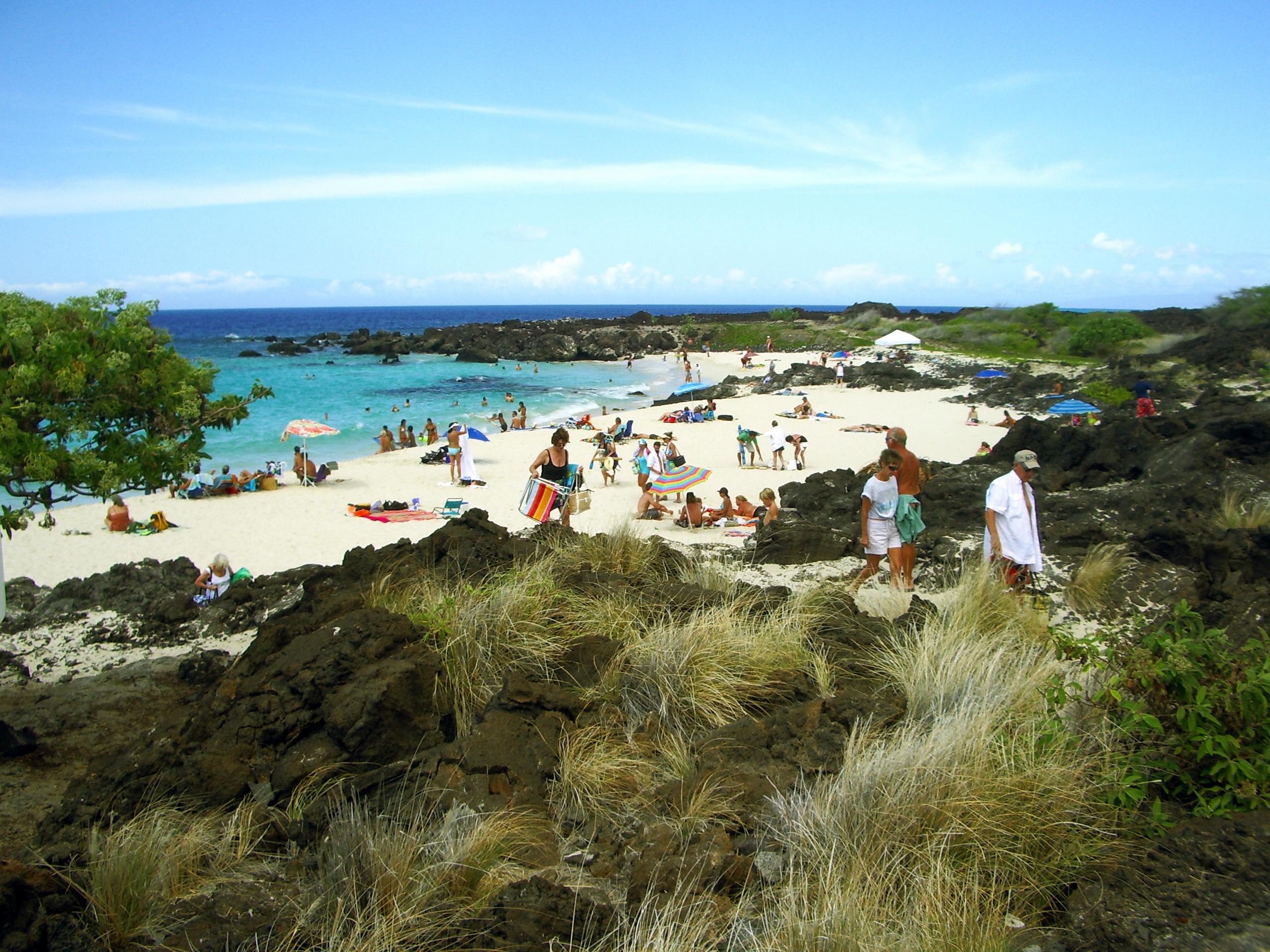 Best Snorkeling Beaches Big Island