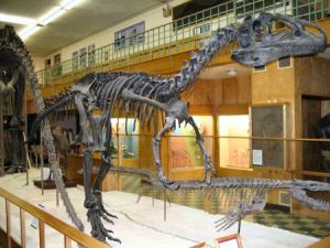 Dinosaur Fossils at the University of Wyoming Geological Museum Will No Longer Be On Public Display So That The University Of Wyoming May Continue To Spend Millions Of Tax Dollars On Losing Athletic Teams