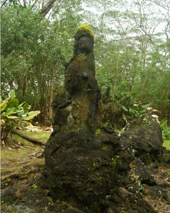 Lava Tree Mold at Lava Trees State Monument, Big Island, Hawaii: Photo by Donald B. MacGowan