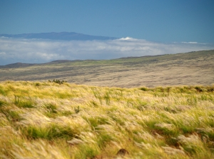 Haleakala Volcano on Maui from Saddle Road: Photo by Donnie MacGowan