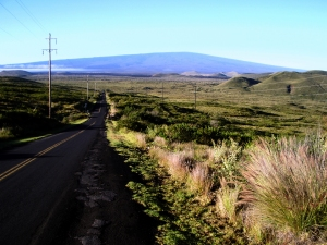 Morning View of Mauna Loa From Along the Saddle Road: Photo by Donald B. MacGowan
