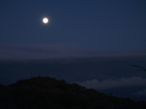 Full Moon Over the Mauna Kea-Mauna Loa Sadlle: Photo by Donald B. MacGowan