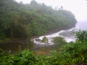 The Deserted Jungle Beach at Hakalau Gulch Just North of Hilo: Photo by Donald B. MacGowan