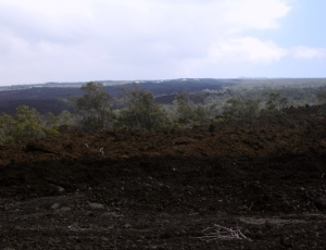 Disaster of 1868 Lava Flows, South Flank of Mauna Loa: Photo by Donald B. MacGowan