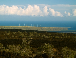 View Across HOVE to the Windmills at South Point, Big Island Hawaii: Photo by Donnie MacGowan