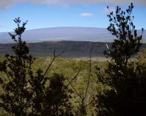A Morning Glimpse of Mauna Loa Behind Kilauea Iki Crater: Photo by Donald B. MacGowan