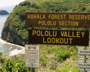 At Pololu Valley, Hamakua Coast, Big Island, Hawaii: Photo by Donald B. MacGowan
