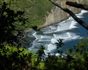 The Beach at Pololu Valley From the Ridge Between Pololu and Honokane Iki Valleys: Photo by Donald B. MacGowan