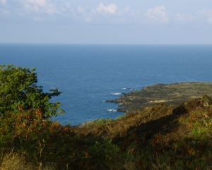 View of the Kona Coast from the Cook Monument Trail:Photo by Donald B. MacGowan