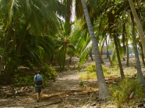 As the trail to Honomalino Beach Winds Toward the Shore, It Passes Several Private Residences and Private Property; Be Sure To Respect These People's Property and Privacy: Photo by Donald B. MacGowan