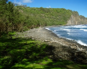 Looking Back West Across Pololu Beach From the Start of the Honokane Nui Valley Trail: Photo by Donnie MacGowan