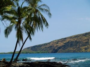 Across Kealakekua Bay to Cook Monument from Manini Beach, Kona Coast: Photo by Donnie MacGowan
