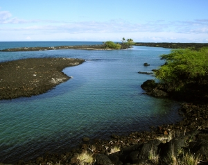 All that remains of a mile-long fishpond that was destroyed by flowing lava are these gorgeous, turquoise brackish ponds: Photo by Donald B. MacGowan