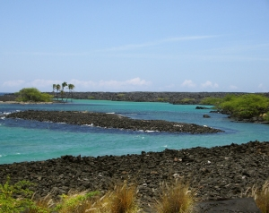 The Brackish Lagoons of Kiholo Bay: Photo by Donald B. MacGown