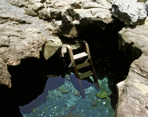 Keanalele Water-hole, a freshwater Queen's Basth in a lava tube, near Kiholo Bay, Hawaii: Photo by Donald B. MacGowan