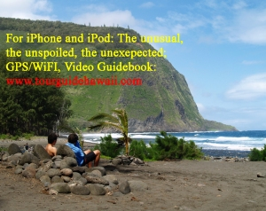 Waipio Beach Bums_edited-2