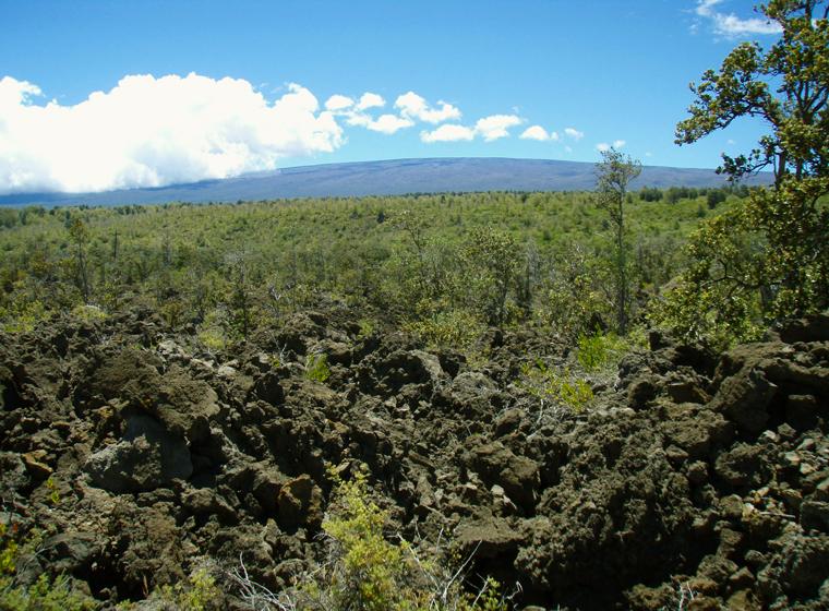 Footprint Trail Big Island