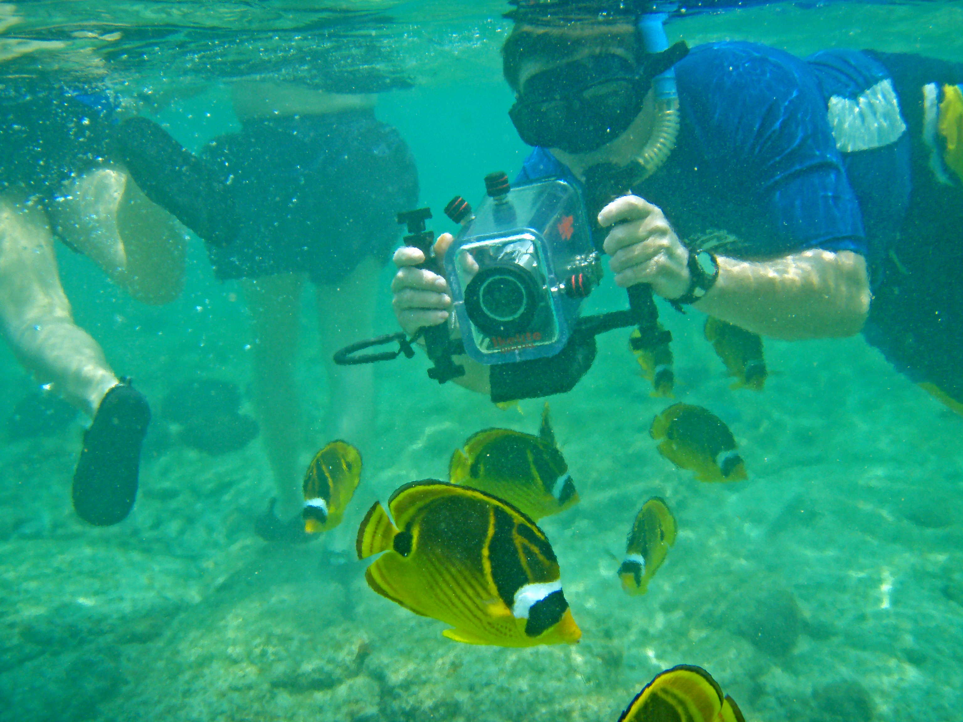 Freshwater fish of hawaii - Bart Hunt Filming At Kahalu U Beach Kailua Kona Hawaii Photo By Donnie Macgowan