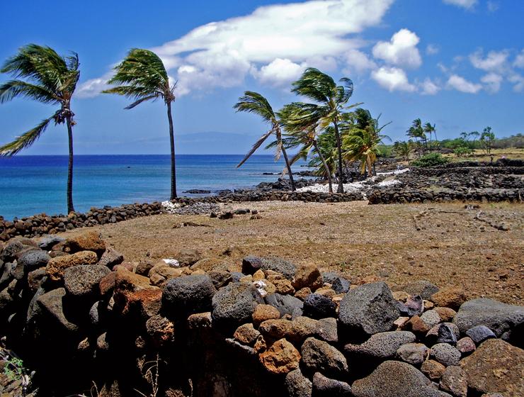 reconstruction-of-the-lapakahi-village-common-area-lapakahi-state-park-koahala-coast-hawaii-photo-by-donald-b-macgowan_edited-1.jpg